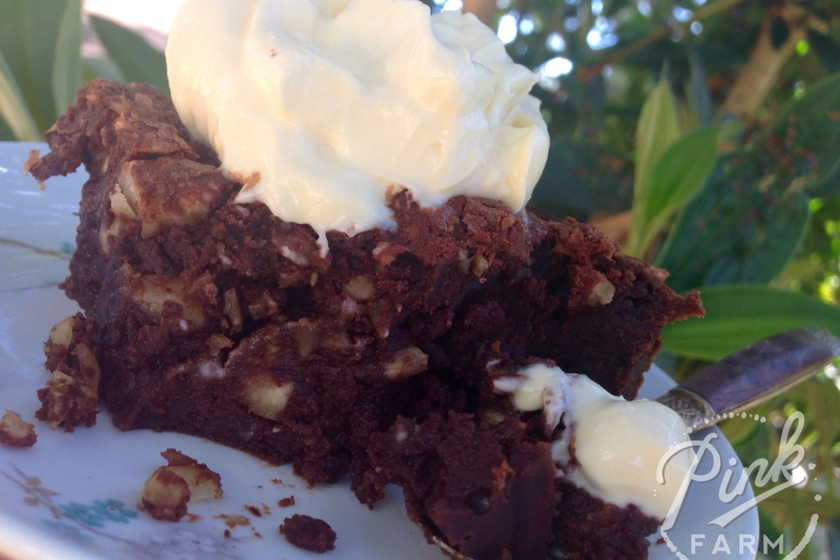 decadent brownie 2